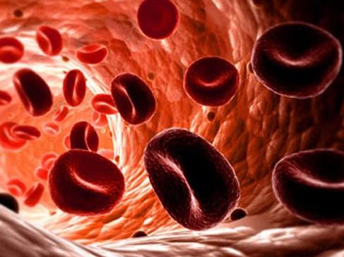 Антигипоксанты для организма человека: Повышение  работоспособности