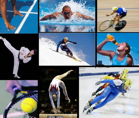 классификация видов спорта