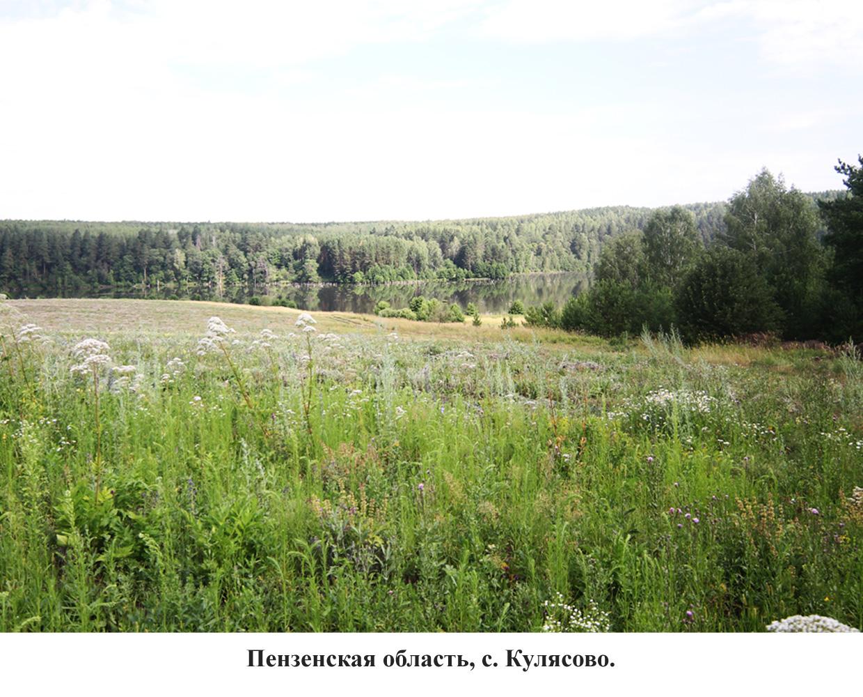панорама-3