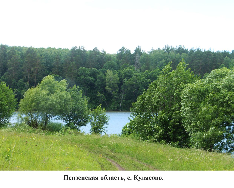 панорама-5