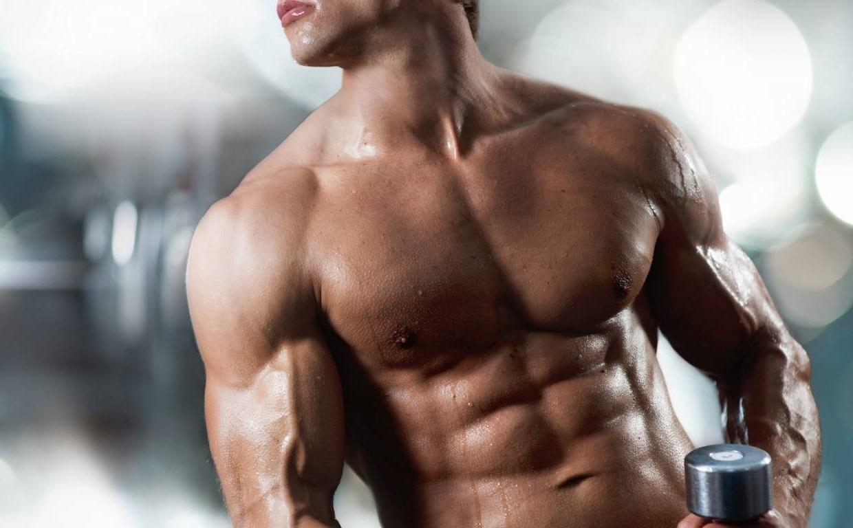 Тренировки эктоморфа для набора мышечной массы в тренажерном зале