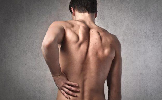 мышцы поясничного отдела