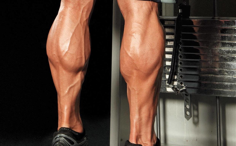 Упражнения для мышц ног: комплекс упражнений для развития сильных ног