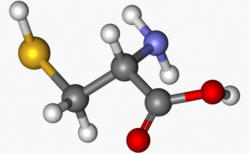 аминокислота цистеин