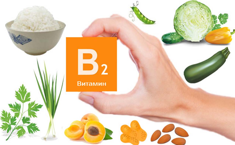 роль витамина b2