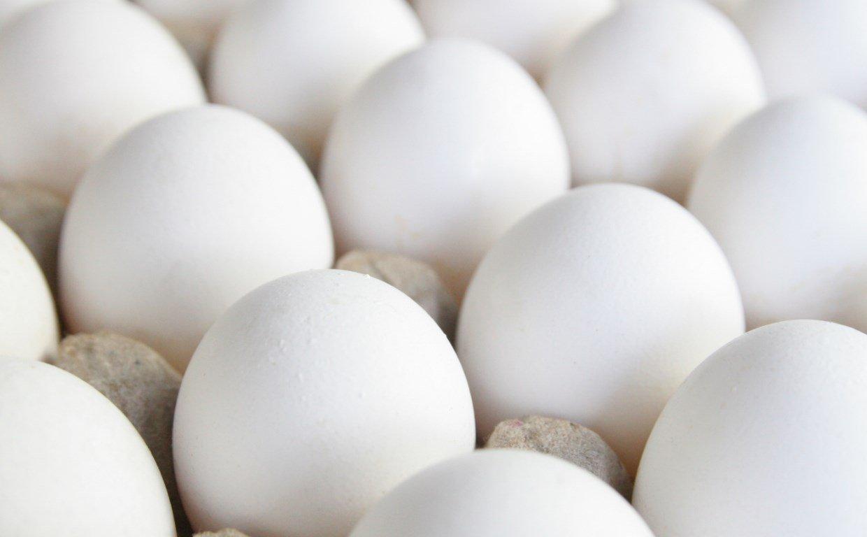Яйца в спорте