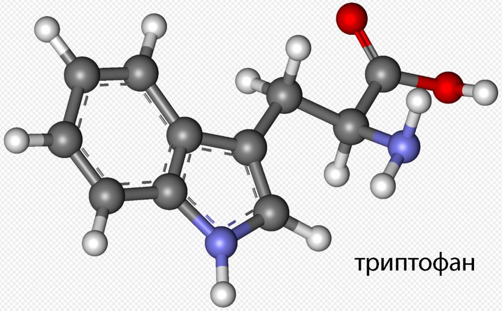 аминокислота триптофан