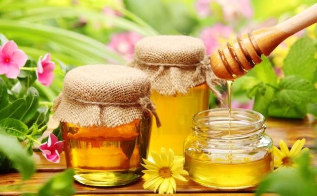 значение пчёл