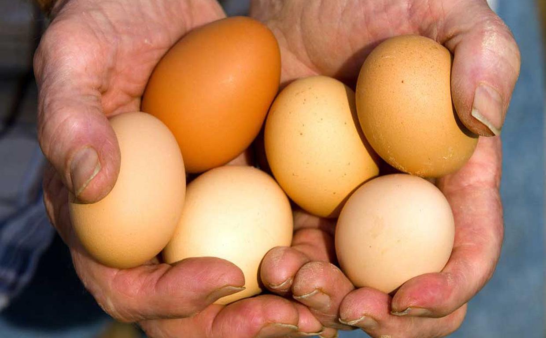 Яйца для роста мышц