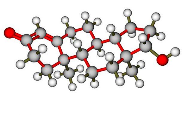 Роль гормона тестостерона