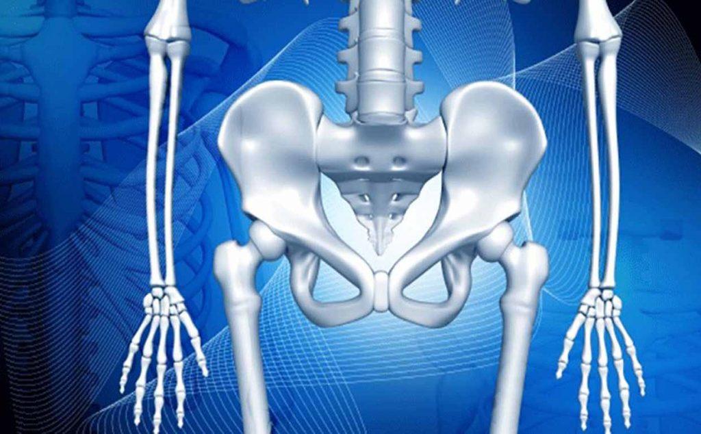 физиология костной ткани