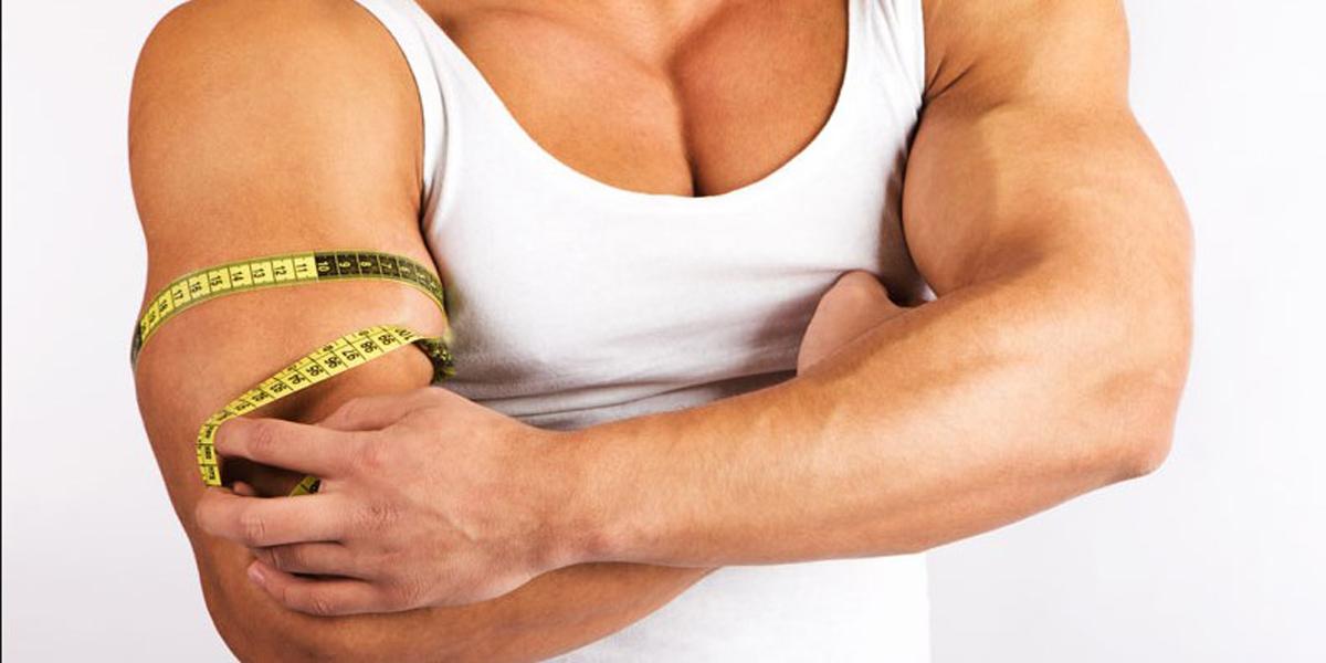 спортивное питание для мышц