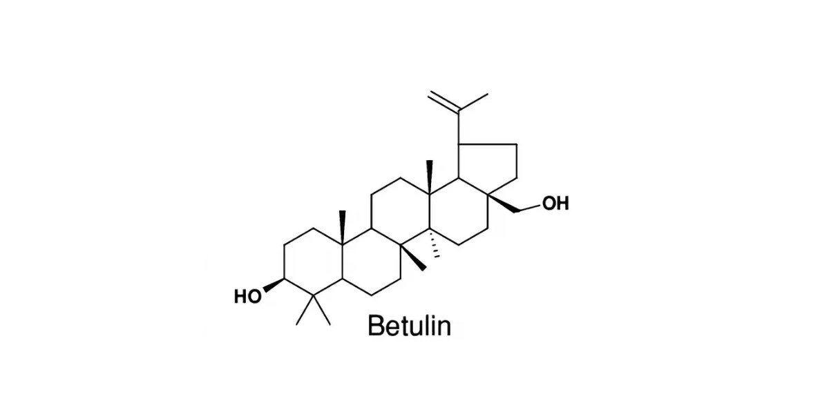бетулин