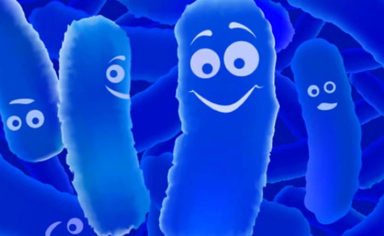 Бактерии полезные картинки