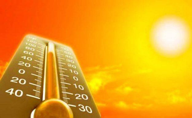 помочь сердцу в жару