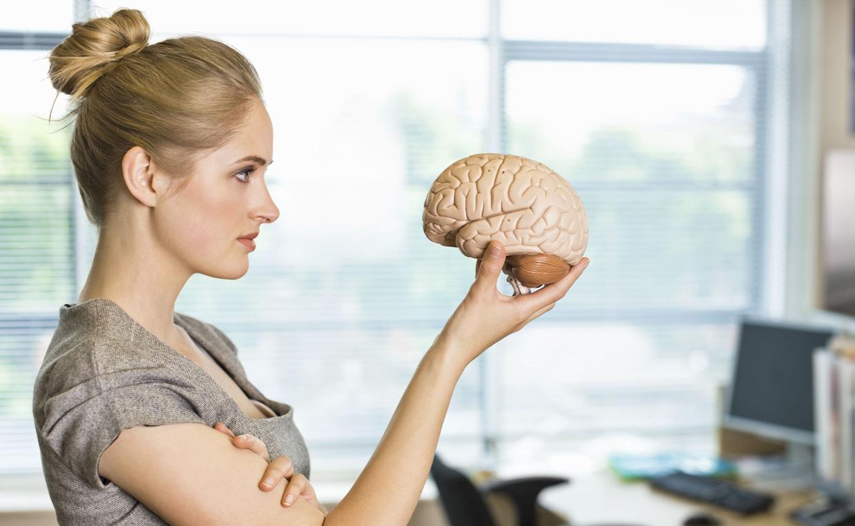 область мозга