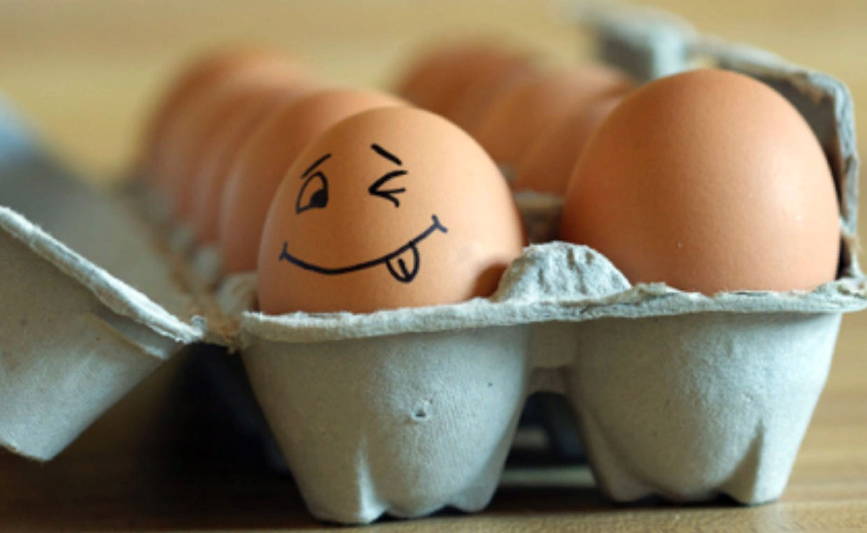 Image result for Всемирный день яйца