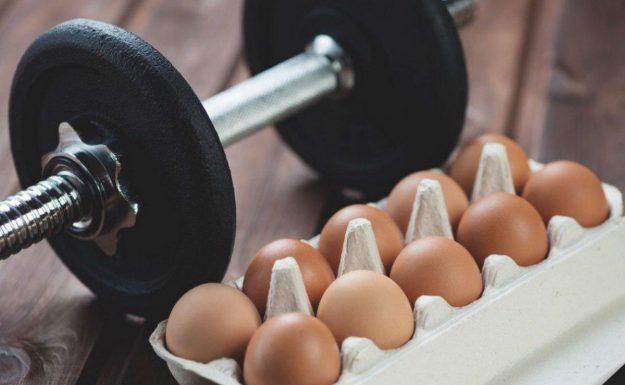 яйца после тренировки
